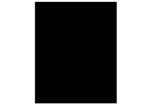 菲比斯公司 LOGO 黑色 PNG