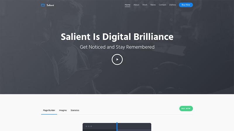 Salient | 中文版,汉化版响应式多用途 WordPress主题