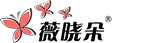 薇晓朵网络工作室 Logo标志