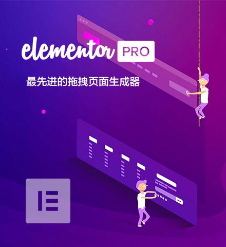 Elementor Pro | 页面生成器